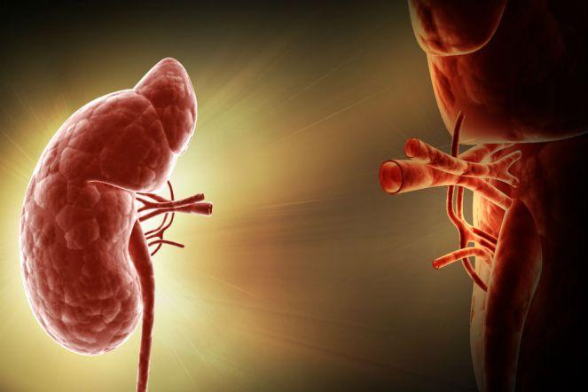 Transplantasi Organ Vital Tubuh